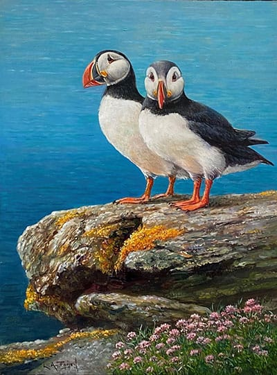 puffins in love lion arie feijen homepage
